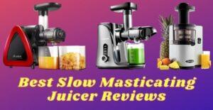 slow masticating juicer
